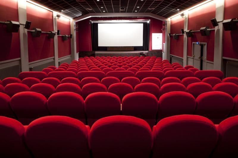 Siūloma kinui skirti 60 proc. įplaukų iš PVM už filmų platinimą