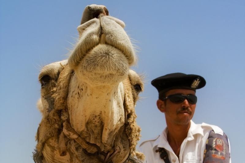 Egipto teismas uždraudė policininkams ir kariams auginti barzdas
