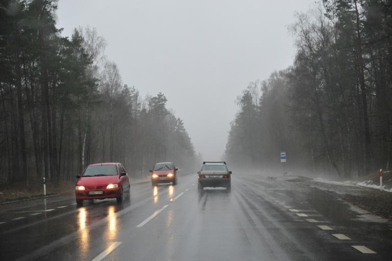 Vairuotojai įspėjami saugotis plikledžio ir nulaužtų šakų