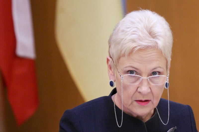 I.Degutienė teigia buvusi šokiruota Ž.Plytniko pateiktų sumų