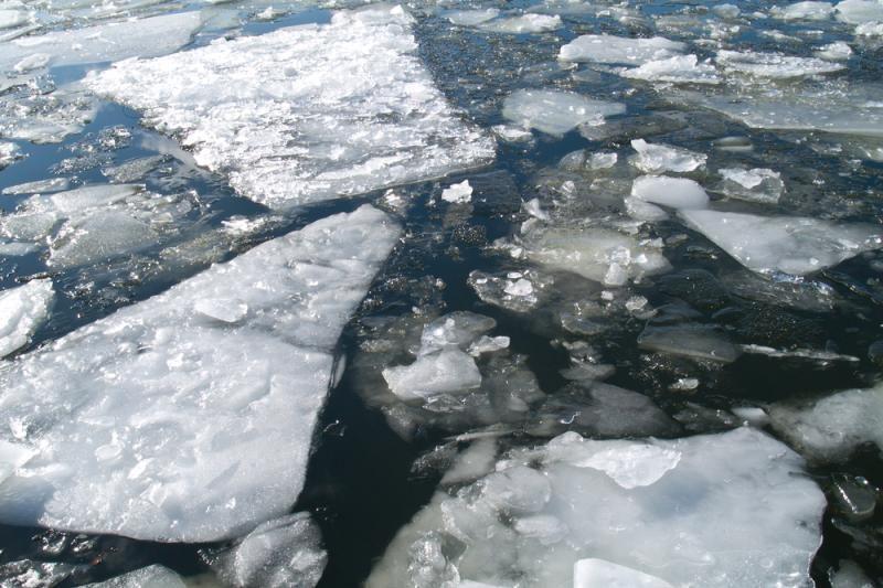 Alytaus rajone po ledu rastas moters kūnas