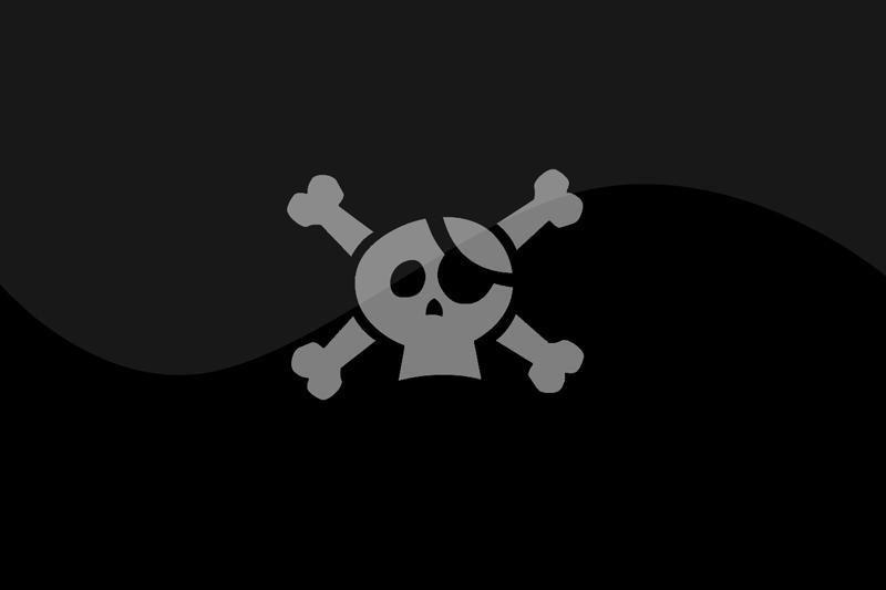 Vokietijoje didėja Piratų partijos populiarumas