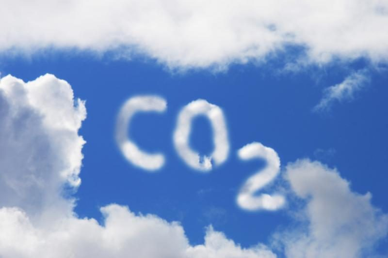 Eurokomisarė: ši vasara parodė, kad klimatas iš tiesų keičiasi