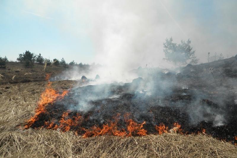 Vilniaus rajone dega trys namai ir žolė