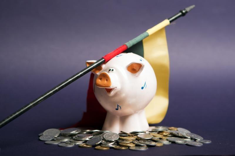 2013-ųjų biudžetui - beveik 700 mln. litų papildomoms išlaidoms