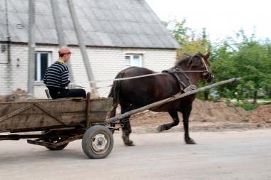 Kernavėje pasibaidžius arkliui vežimas trenkėsi į autobusą