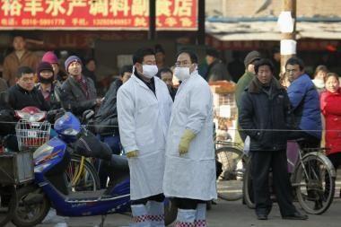 Į Aziją sugrįžo paukščių gripas