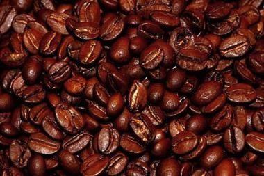 Biodegalai - iš kavos