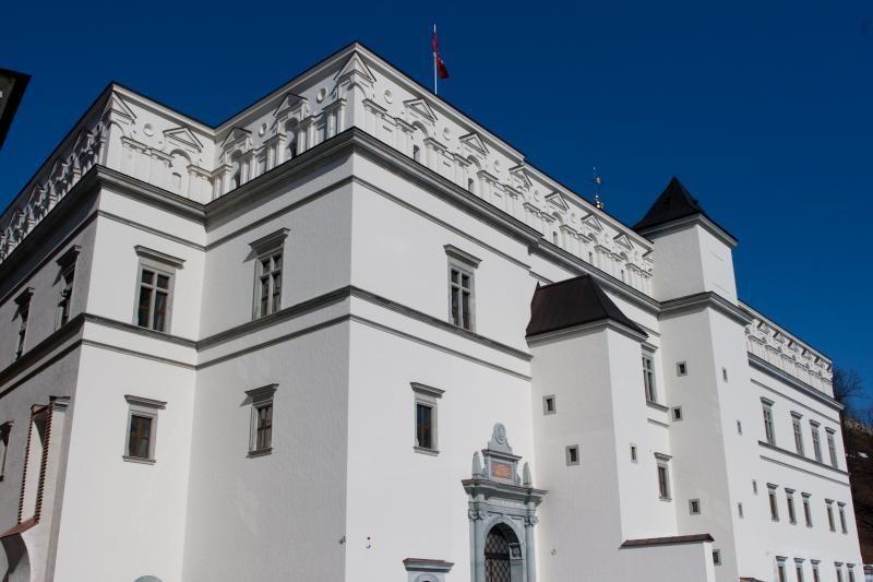 Muziejaus Valdovų rūmuose užbaigimo projektas kainuos 1,3 mln. litų
