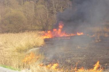 Pasieniečiai sulaikė pernykštę žolę Baltarusijos pasienyje deginusius šalčininkiečius