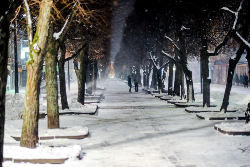 Naujametinę naktį palis, 2013-ieji pirmomis dienomis šalčių nežada