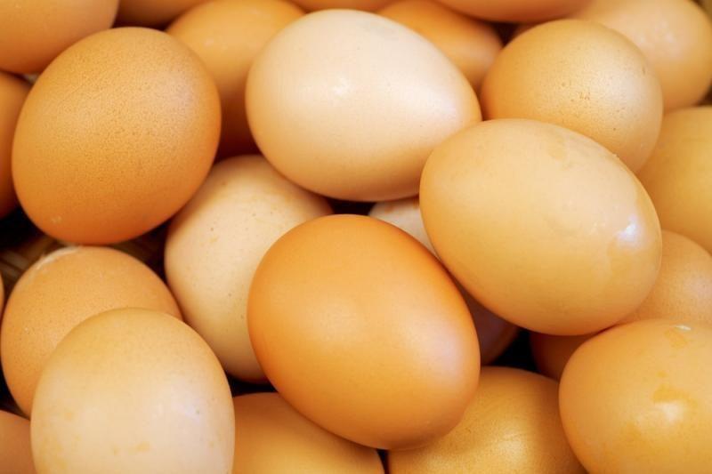 Estijoje ribojamas įsigyjamų kiaušinių kiekis