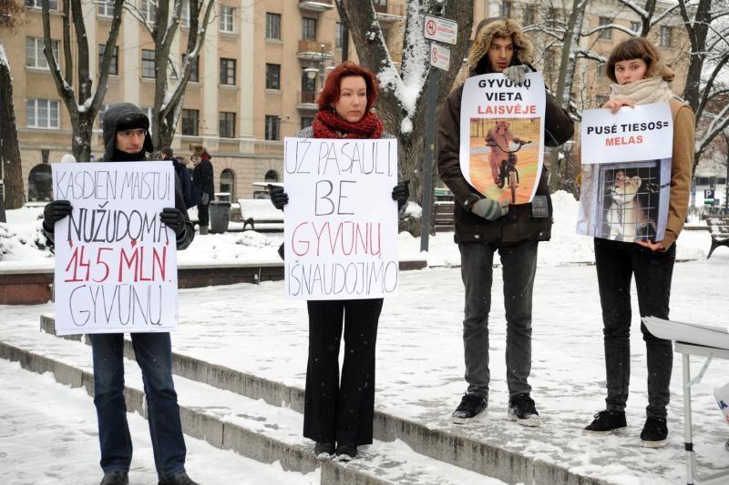 Gyvūnų teisių gynėjų renginyje - netikėtas akibrokštas su kirviu
