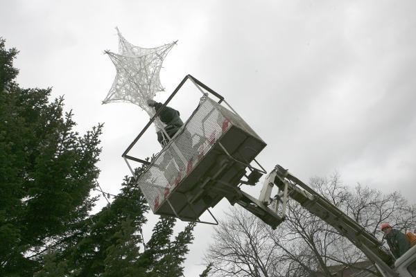 Po Kalėdų egle bus galima susitikti ir pasėdėti