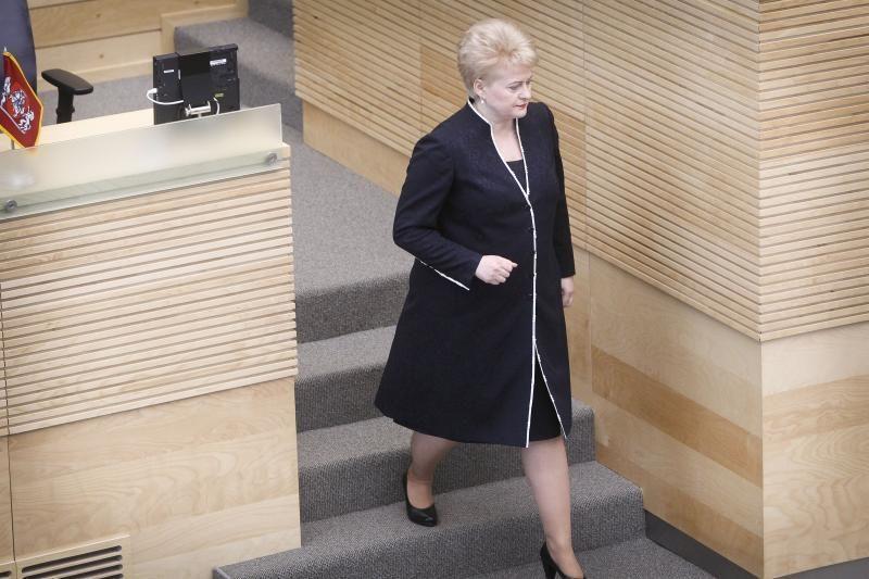 D.Grybauskaitė tvirtina, kad išlaidos gynybai didės