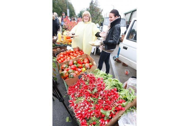 Į Palangos turgaus šventę savaitgalį viliojo atrakcijos