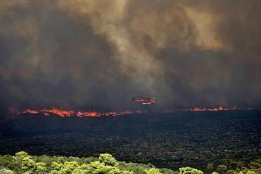 Graikijoje netoli Atėnų siautėja miško gaisras