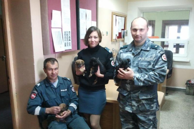 Į gatvę išmestus šuniukus išgelbėjo neabejingi policininkai