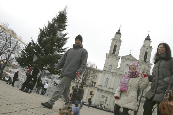 Kauno Kalėdų eglė išrinkta gražiausia Lietuvoje