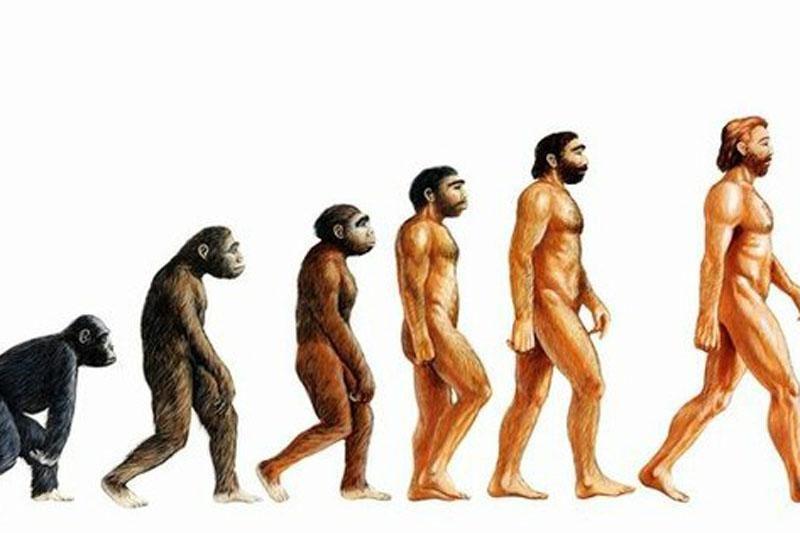 Narcisizmo evoliucija: kodėl per daug pasitikime savimi