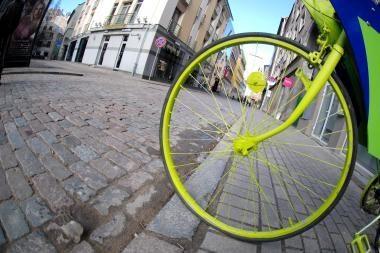 Baltijos keliu važiuojantys dviratininkai - jau Lietuvoje
