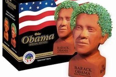 Ant prezidento galvos išdygo žolė