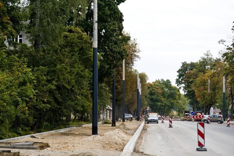 Pjūklo gali sulaukti trečdalis A.Juozapavičiaus prospekto medžių