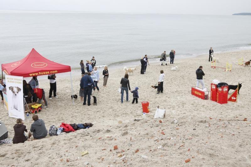 Paplūdimyje pramogavo šeimininkai su savo šunimis
