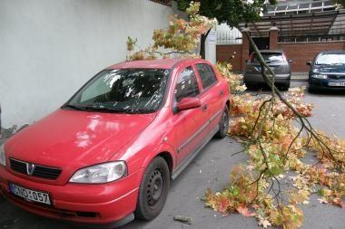 Vėjo nulaužta šaka apgadino mašiną