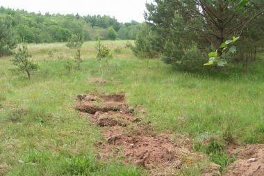 Aktyvinama kova su juodaisiais archeologais