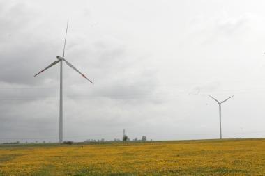 Vėjo jėgainių parko statyboms pamaryje – 92 mln. litų