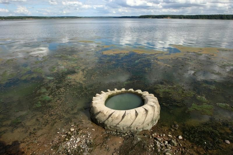 Kauno marių pakrantes gelbės nuo šiukšlių