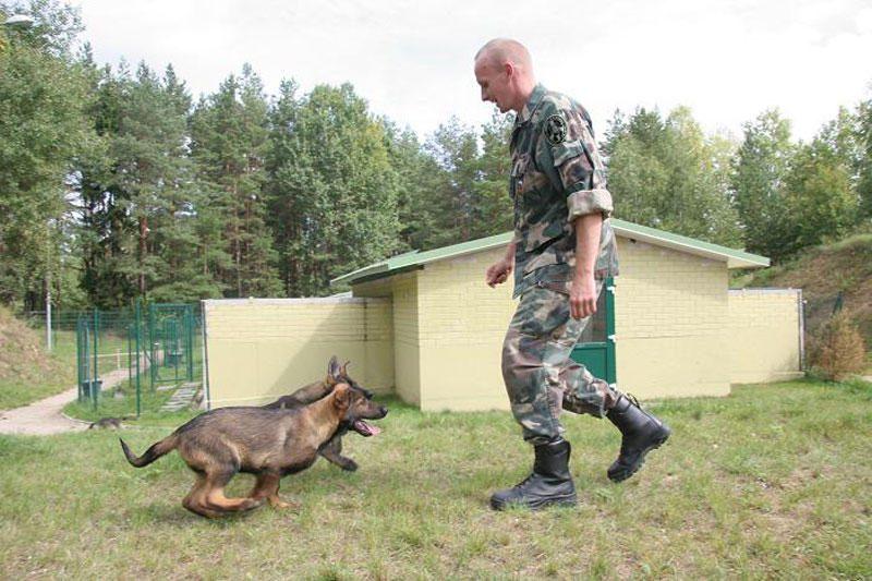 Už ES pinigus pasieniečiai įsigijo tris šuniukus