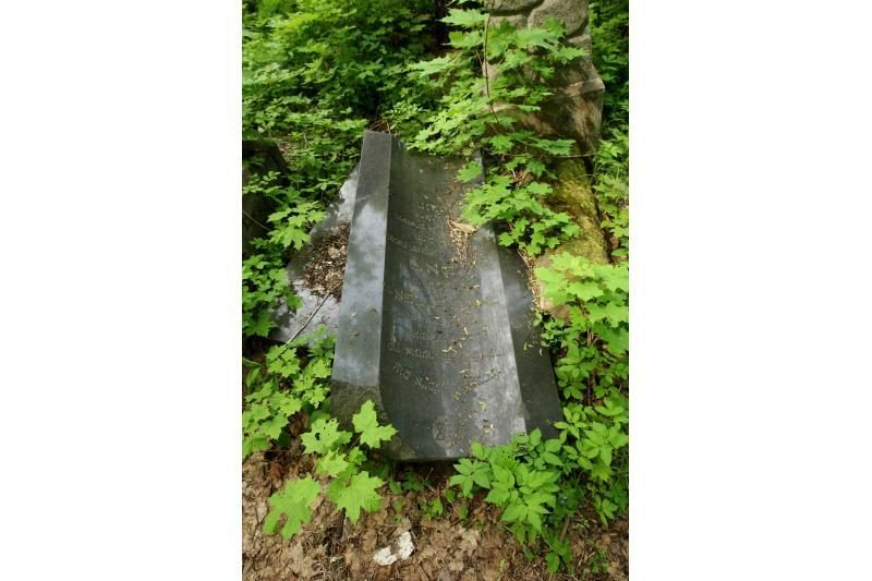 Apleistas žydų kapines pradėjo gelbėti nuo šiukšlių