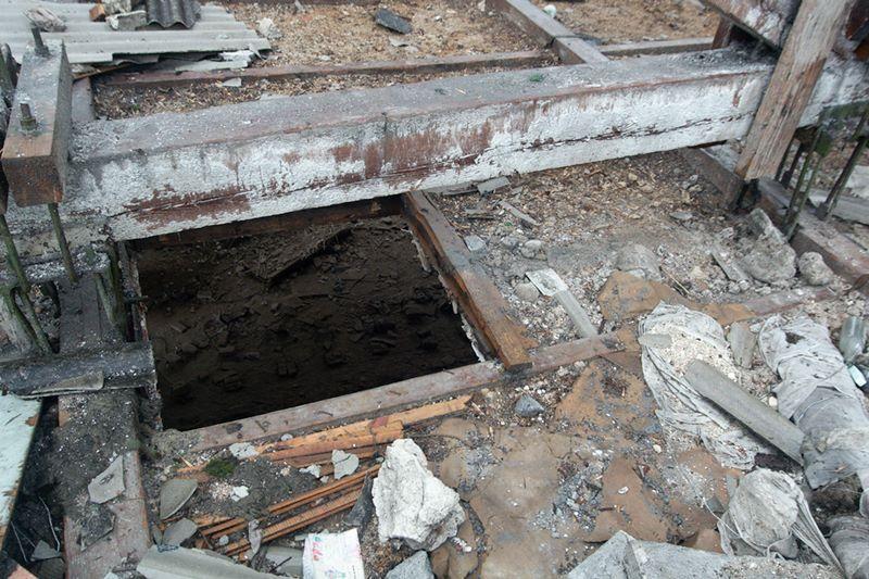 Per liūtį Vilniuje nukrito darbininkas