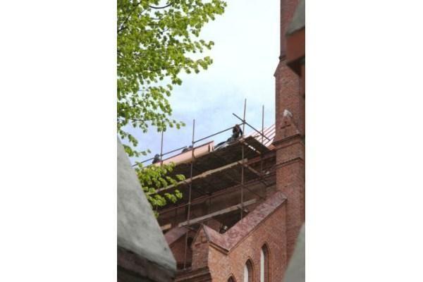 """Restauratoriai Palangos bažnyčią dengia """"auksiniu"""" stogu"""