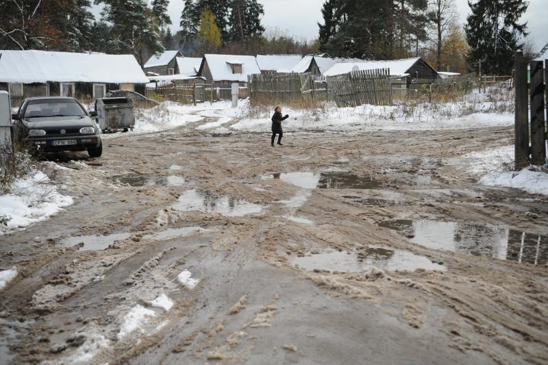 Čigonų taboro gyventojai boikotavo rinkimus