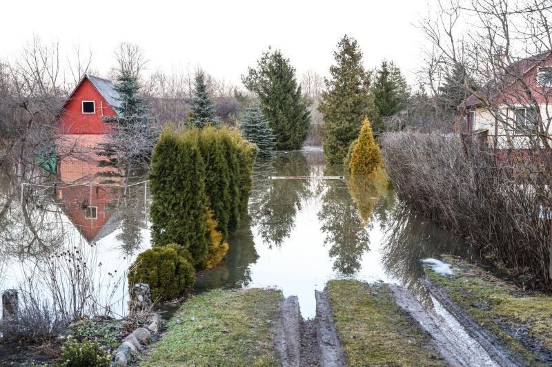 Pralaužęs pylimą Kauno rajone Nevėžis užliejo sodybas