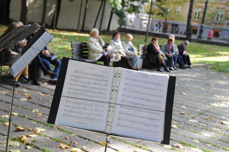 Žemaitės skvere skambėjo rimtoji muzika