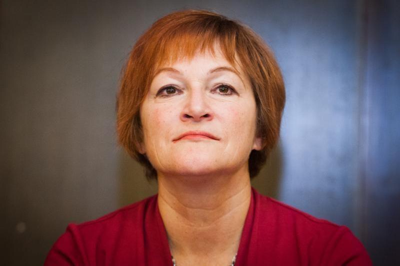 B. Vėsaitės projektą sukritikavo Europos teisės departamentas