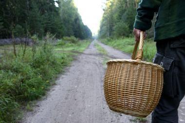 Varėnos rajone kaukėti vyrai iš senolio atėmė grybus