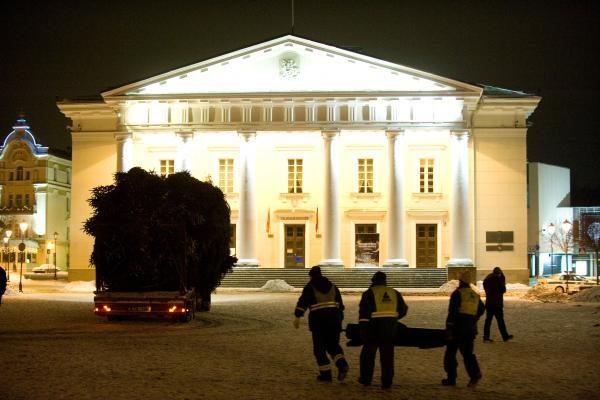 Šiąnakt į Vilniaus Rotušės aikštę atkeliavo Kalėdų eglė