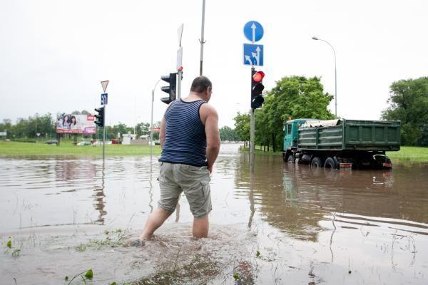 Liūtis ilgam paralyžiavo Vilniaus transportą