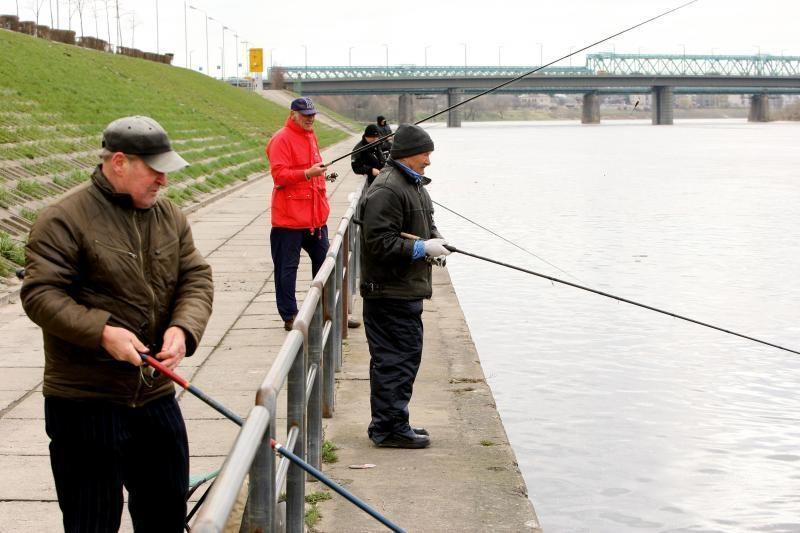 Vėsų pavasarį Nemunas žvejų netraukia