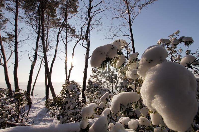 Savaitgalį vėl atšals: prognozuojama daugiau nei 20 laipsnių šalčio