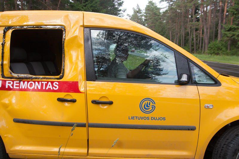 Vilniaus apylinkėse klaidžioja sužeistas briedis
