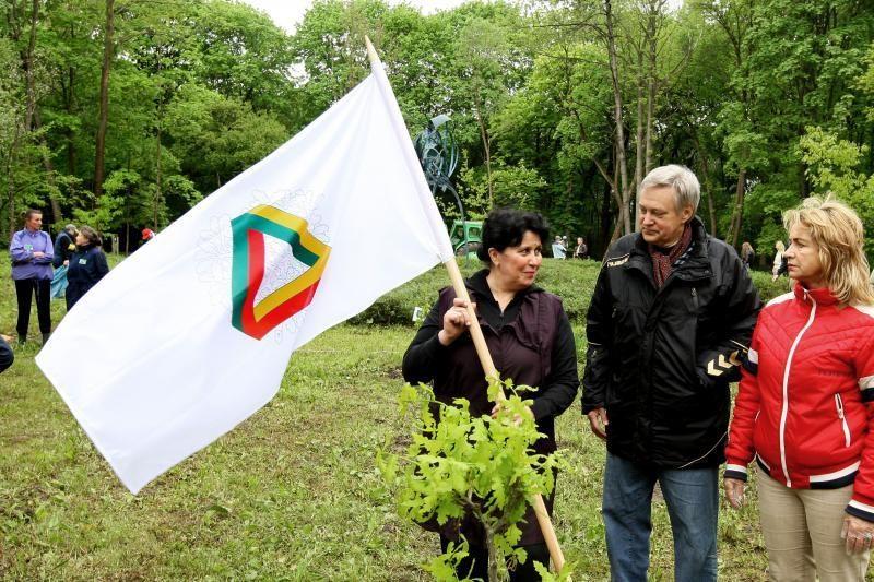Unikalių Lietuvos ąžuolų giraitė plečiasi