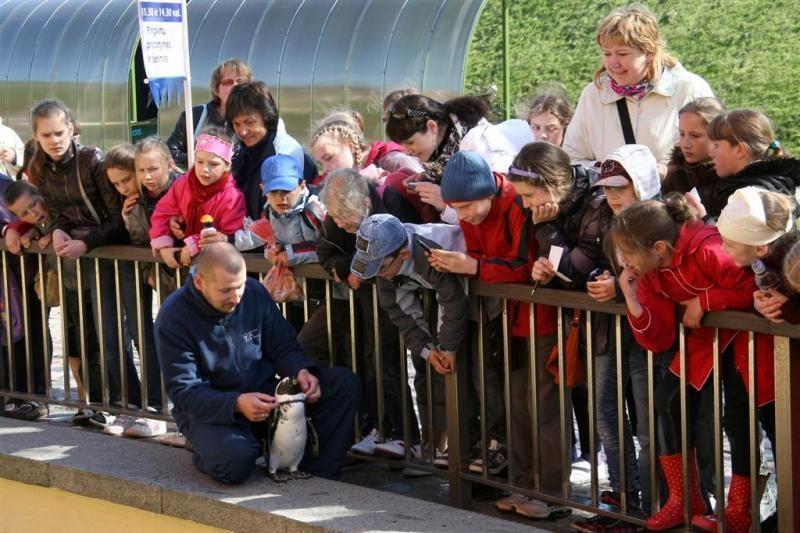 Tarptautinę muziejų dieną Jūrų muziejus švęs net tris dienas