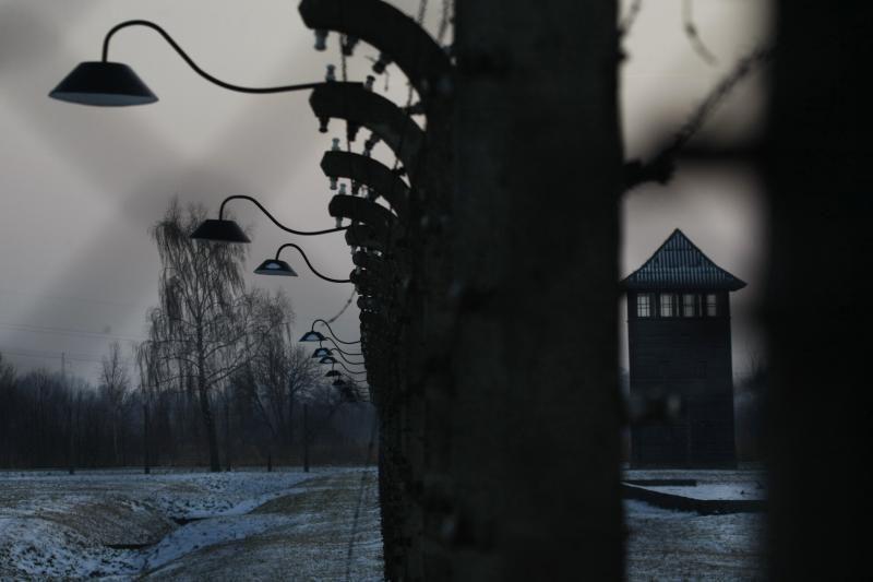 Minimos Aušvico išlaisvinimo  metinės