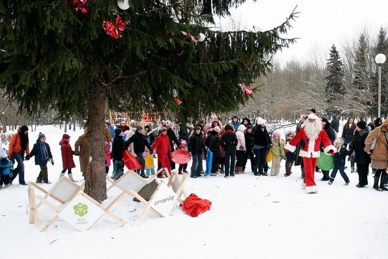 Daugiabučių kiemuose vėl žėrės Kalėdų eglutės